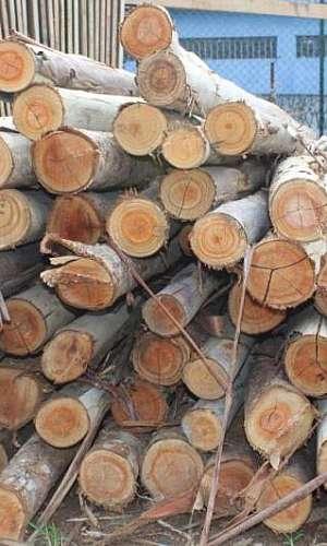 Pontaletes de madeira